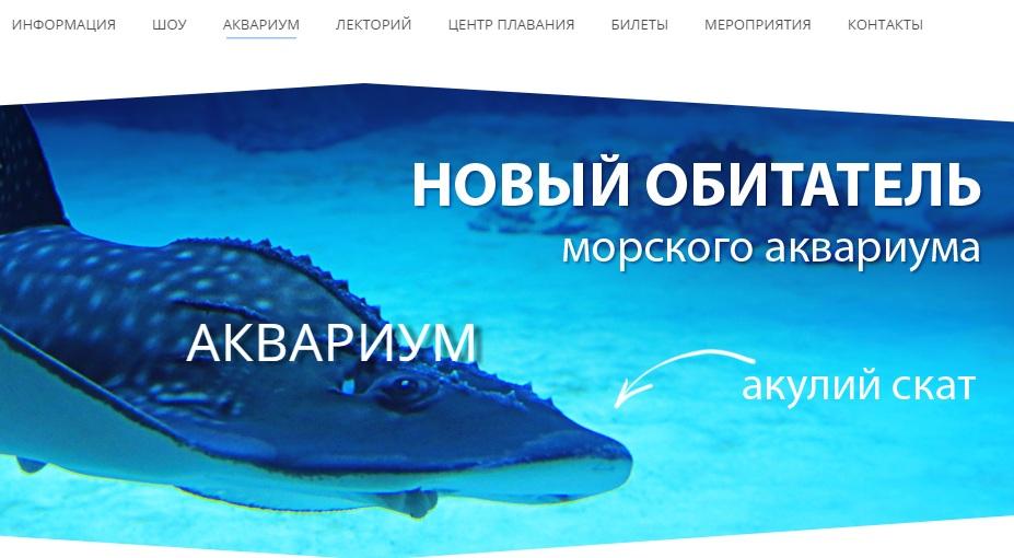 Информация об аквариуме в Москвариуме